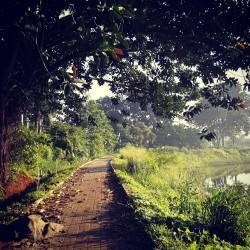 Jalan setapak, rute jalan pagi saya :)