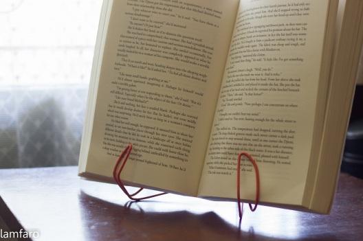 Meski belum serapi buatan Jihong Yeom, penahan buku ini bisa berfungsi dengan baik.